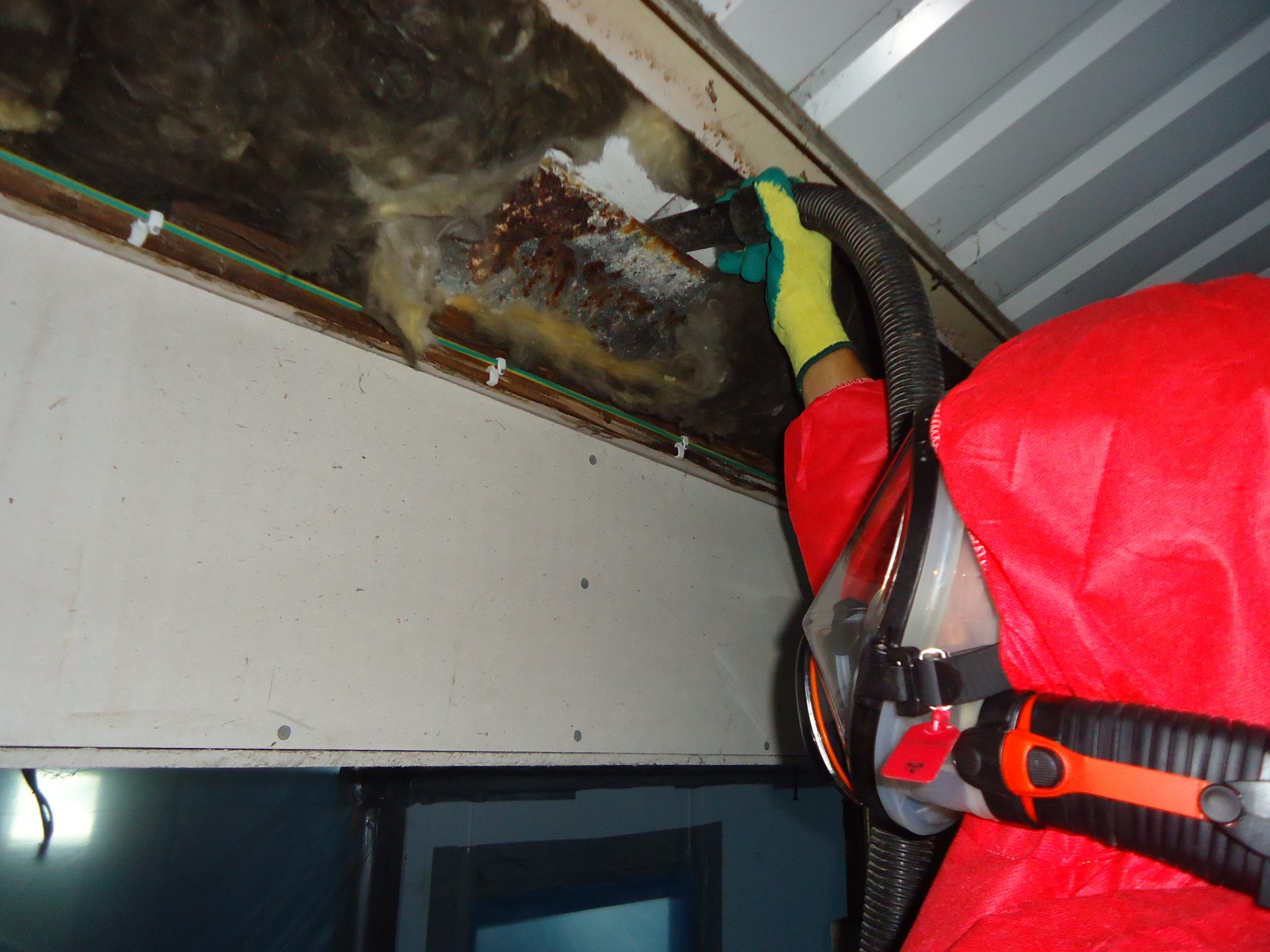 Asbestos Removal and Surveys in Devon - Gilpin Environmental
